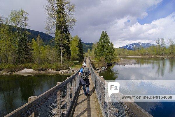 Malakwa Suspension Bridge  Eagle River  Malakwa  British Columbia  Canada  MR_001