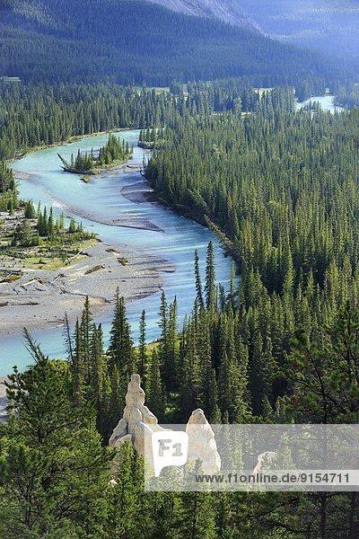Tal  Fluss  Unterricht  Hoodoo  Banff Nationalpark  Alberta  Kanada