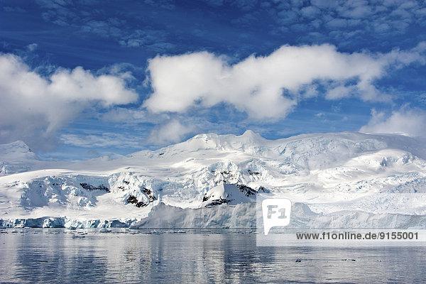 Neko Hafen  der Antarktischen Halbinsel