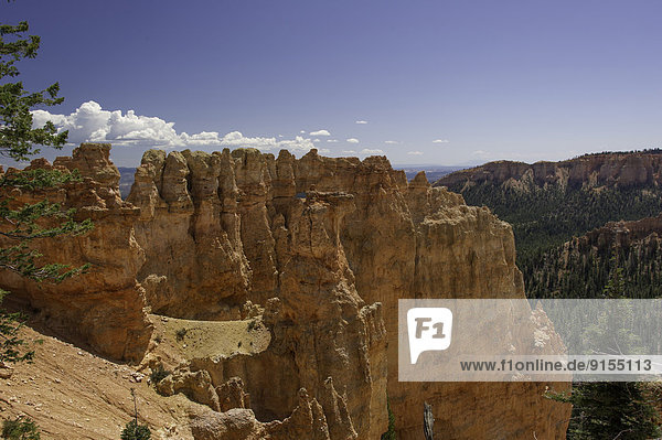 Vereinigte Staaten von Amerika  USA  Fotografie  Landschaft  Bryce Canyon Nationalpark  Schlucht  Utah