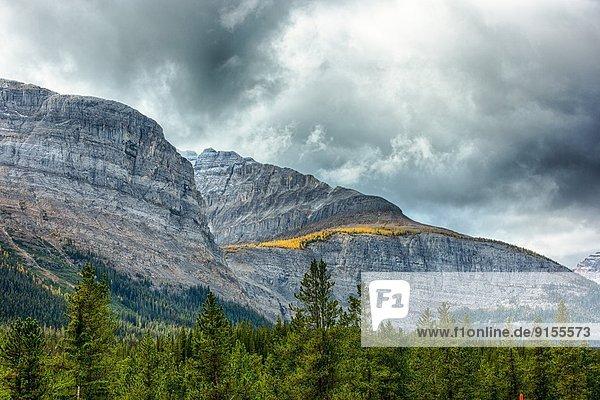 Yoho Nationalpark  British Columbia  Kanada