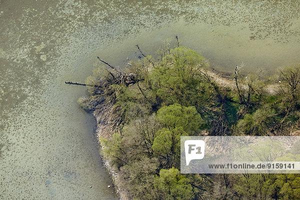 Ufer am Überlingersee  Bodensee  Baden-Württemberg  Deutschland Ufer am Überlingersee, Bodensee, Baden-Württemberg, Deutschland