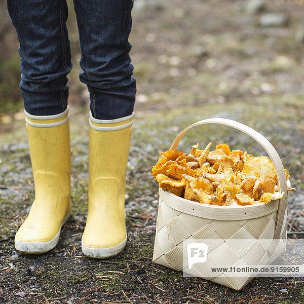 Niedriger Teil des Mädchens mit Gummistiefeln steht neben einem Korb voller Pilze.