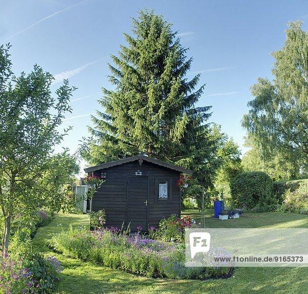 Schrebergarten mit einer kleinen Hütte  Bayern  Deutschland