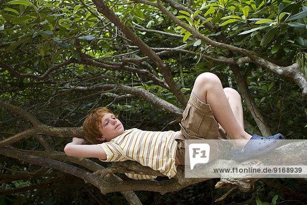 Caucasian boy relaxing in tree