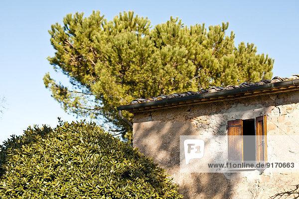Italien  Toskana  Volterra  Fenster am Gebäude und Baum