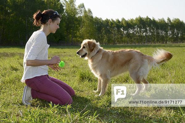Junge Frau spielt mit Golden Retriever auf der Wiese