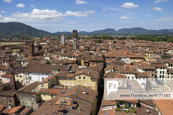 Italien  Toskana  Provinz Lucca  Lucca  Stadtbild  Blick von der Torre Guinigi