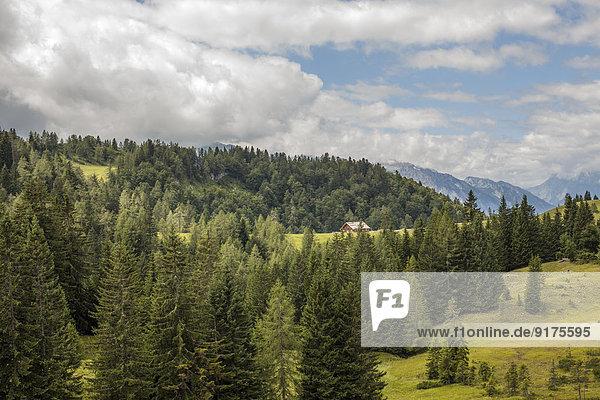 Österreich  Lungau  Wald und Berge