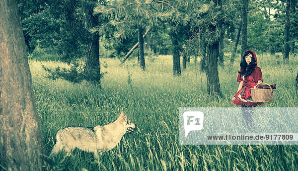 Rotkäppchen wandern im Wald