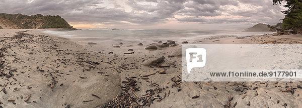 Neuseeland  Südinsel  Tasman  Kahurangi Point  Dämmerung am Strand