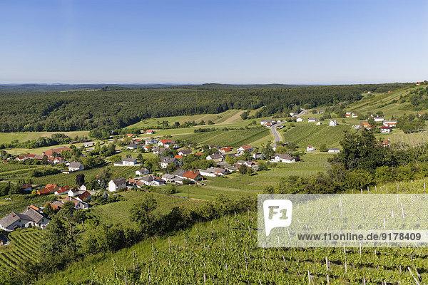 Österreich  Burgenland  Kreis Oberwart  Eisenberg an der Pinka  Weingut