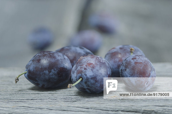Pflaumen  Prunus domestica subsp. domestica  mit Wassertropfen auf grauem Holz