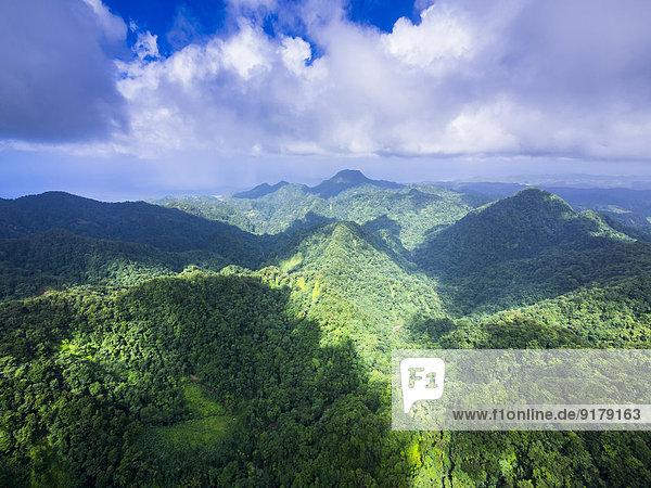 Karibik  Antillen  Kleine Antillen  St. Lucia  Cresslands  Luftbild über Urwald und Berge Karibik, Antillen, Kleine Antillen, St. Lucia, Cresslands, Luftbild über Urwald und Berge