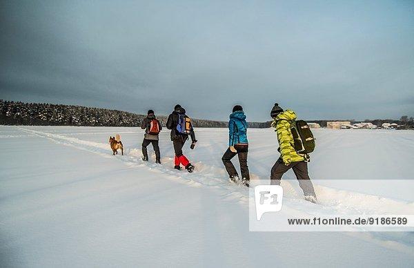 Freundeskreis und Hundewandern auf Schnee
