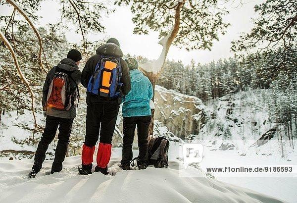 Gruppe von Freunden mit Blick auf den verschneiten Wald  Russland
