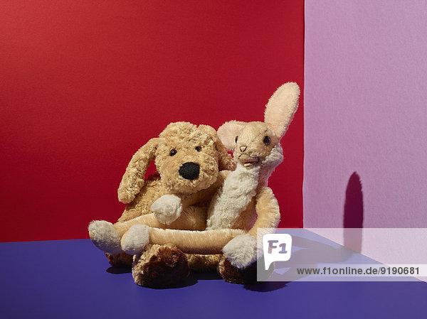 Teddybären auf dem Boden im bunten Zimmer