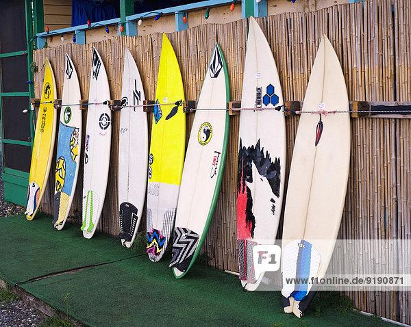 Surfbretter in einer Reihe im Laden Surfbretter in einer Reihe im Laden
