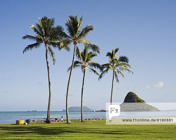 Blick auf Chinaman's Hat vom Strand  Oahu  Hawaii  USA Blick auf Chinaman's Hat vom Strand, Oahu, Hawaii, USA