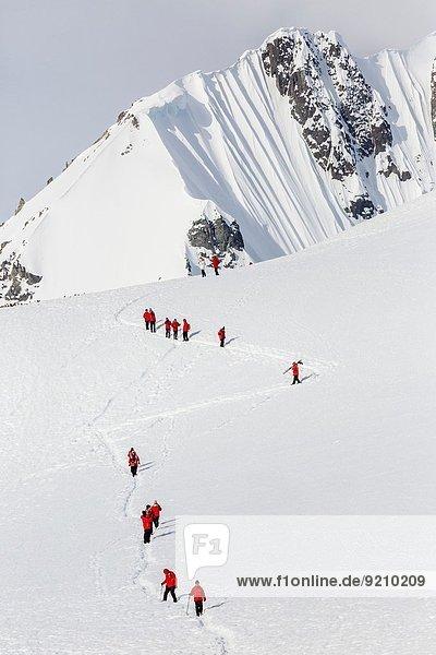 Road Trip Insel wandern Gast Antarktis