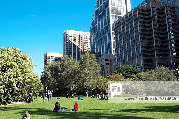Großstadt Monarchie Garten Ansicht Botanik Australien Sydney