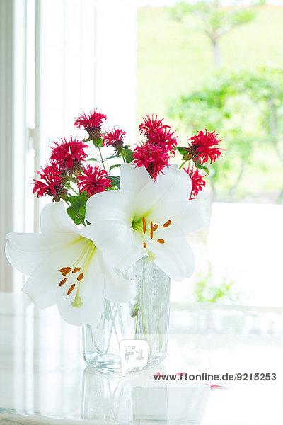 Blume Blumenvase