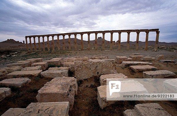 groß großes großer große großen Kolonnade Palmyra Syrien