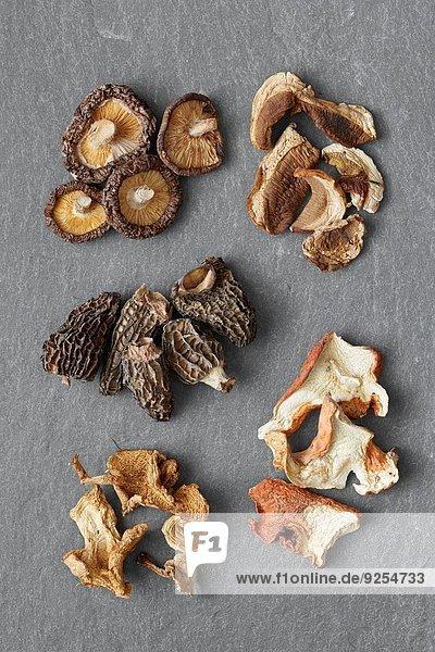 Fünf Sorten von getrockneten Pilzen: Shitake  Steinpilze  Morcheln  Igel  Hummer