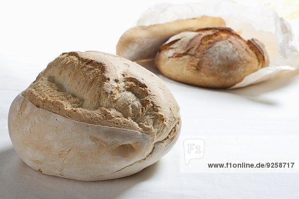 Zwei Pugliese Brote aus Apulien