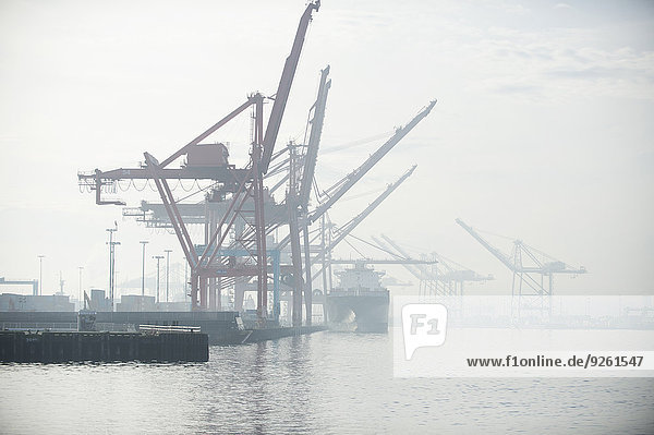 Fischereihafen Fischerhafen Industrie Nebel verschiffen