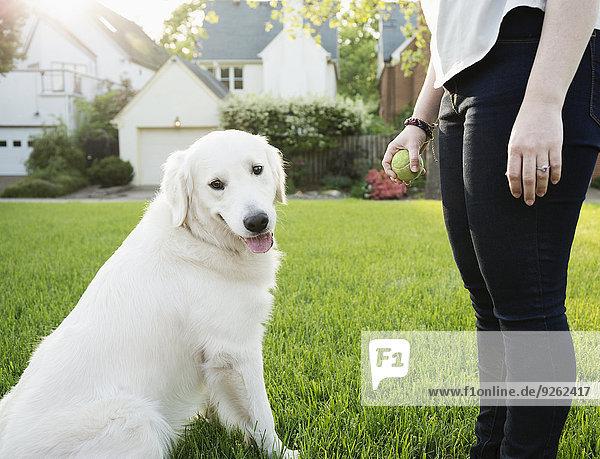 Europäer Frau Hund spielen