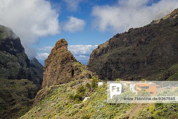 Spanien  Kanarische Inseln  Teneriffa  Teno-Gebirge  Barranco de Masca  Dorf Masca