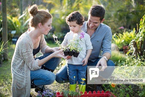 Pärchen und Sohn schauen sich die Pflanzen auf dem Kleingarten an.