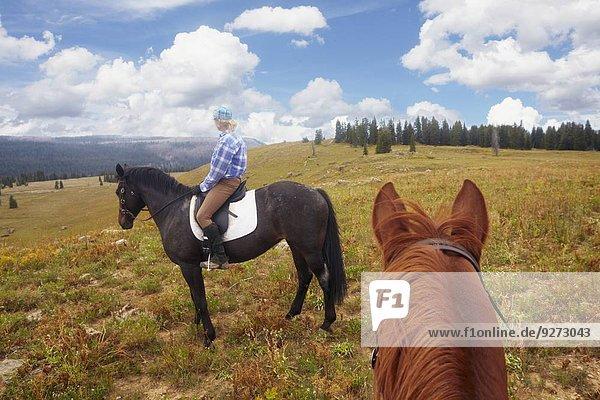 Frau reiten - Pferd