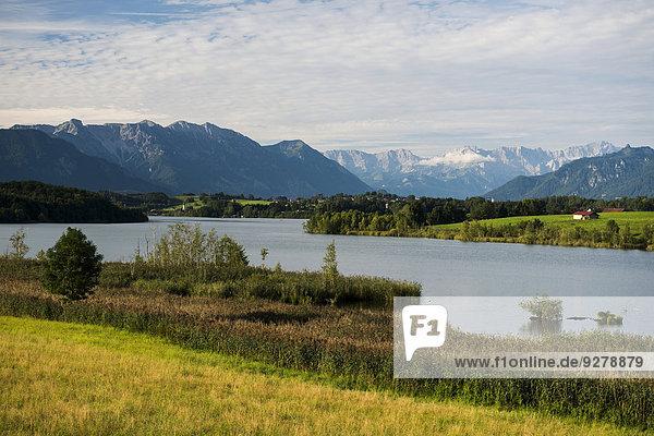 Riegsee  Oberbayern  Bayern  Deutschland