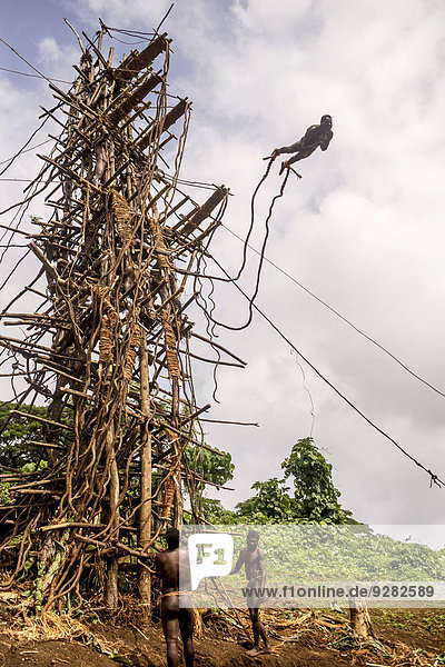 Lianenspringer im Sprung  Pentecost  Vanuatu