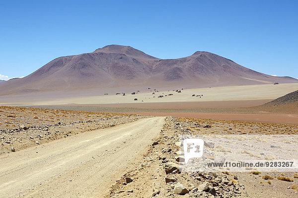Daliwüste  Altiplano  Bezirk Potosi  Bolivien  Südamerika