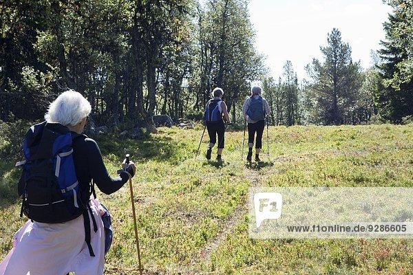 Senior Senioren Frau wandern