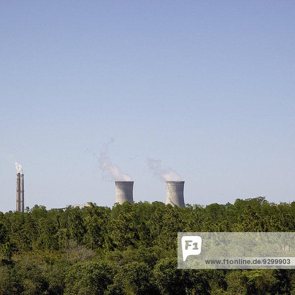 Ein Kernkraftwerk in der Ferne  Wald im Vordergrund