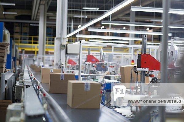 Schachteln in der Produktionslinie der Papierverpackungsfabrik