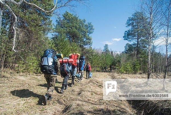 Rückansicht junger Wanderer mit Rucksäcken auf Waldweg