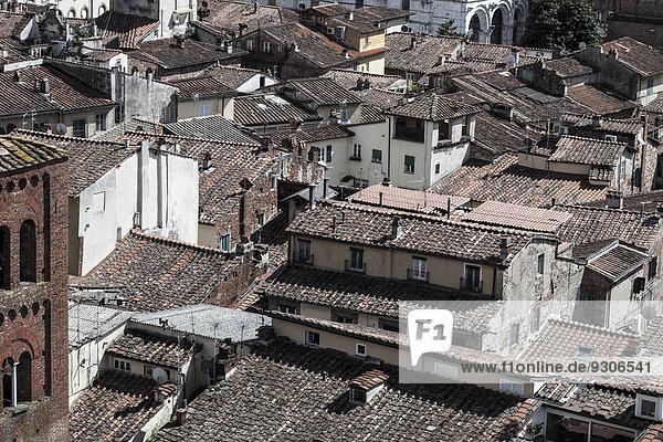 Dächer in der Altstadt  Carrara  Toskana  Italien  Europa
