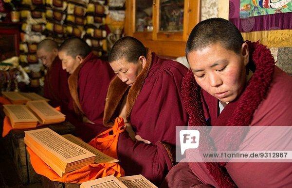 Gebet Religion Dorf fünfstöckig Buddhismus Himalaya Mount Everest Sagarmatha Nonne 90 Kloster vorlesen