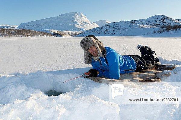 Rentier Rentiere Rangifer tarandus liegend liegen liegt liegendes liegender liegende daliegen 40-45 Jahre 40 bis 45 Jahre Eisfischen