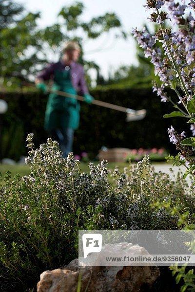 arbeiten Garten Gärtner