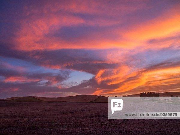 Palouse Sunset.