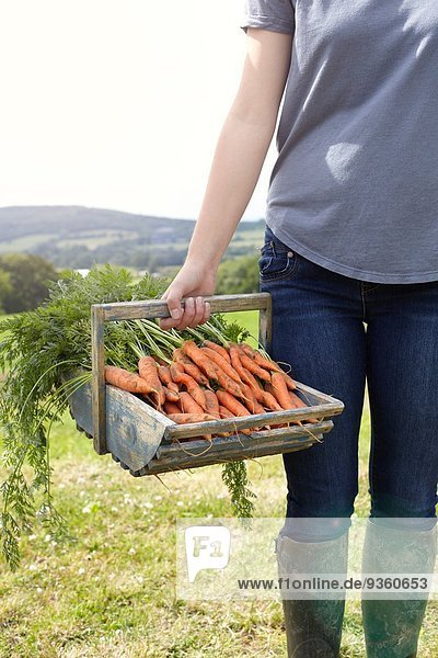 Cropped shot of teenage girl carrying a basket of fresh carrots