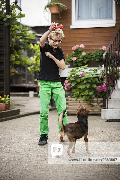 Porträt eines Jungen  der mit seinem Hund spielt