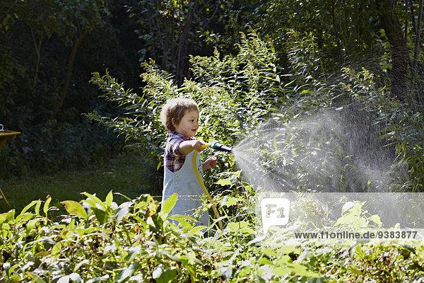Girl Watering Plants  Munich  Bavaria  Germany