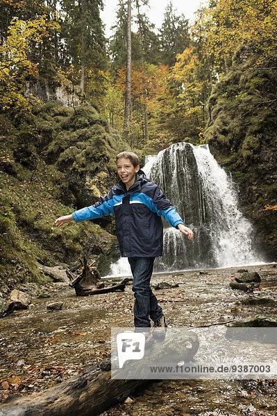 Boy Walking On Tree Trunk In Forest  Bavaria  Germany  Europe